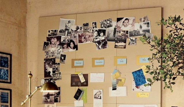 Pin Board for Pinning Photographs