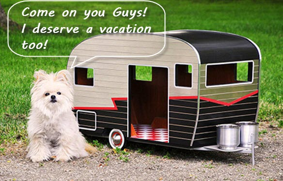 Pet Care Tips on Caravan Holiday