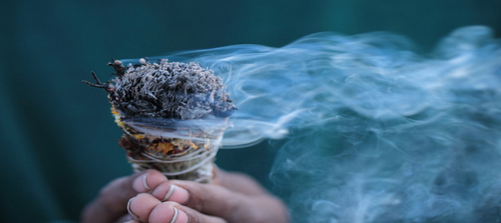 Burn Sage for Repelling Bugs