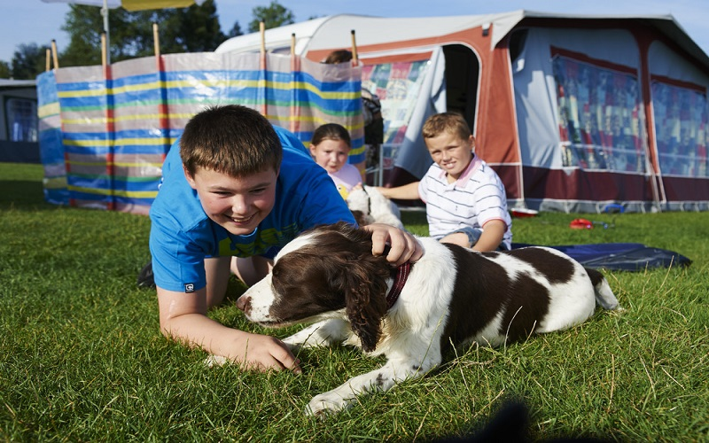 Caravan Holiday Park with Dogs